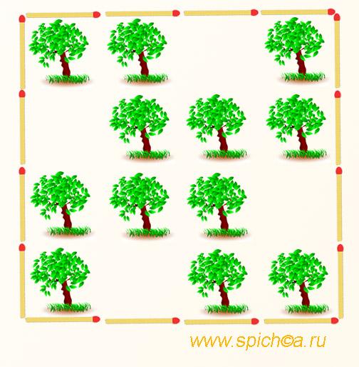 Разделите сад на 4 равных части